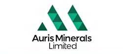 Auris Minerals Limited (AUR:ASX) logo