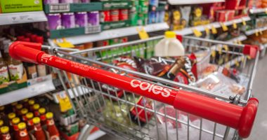 Coles looks to online business to save $1 billion in costs