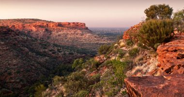 Ark Mines enters joint venture to mine in NT