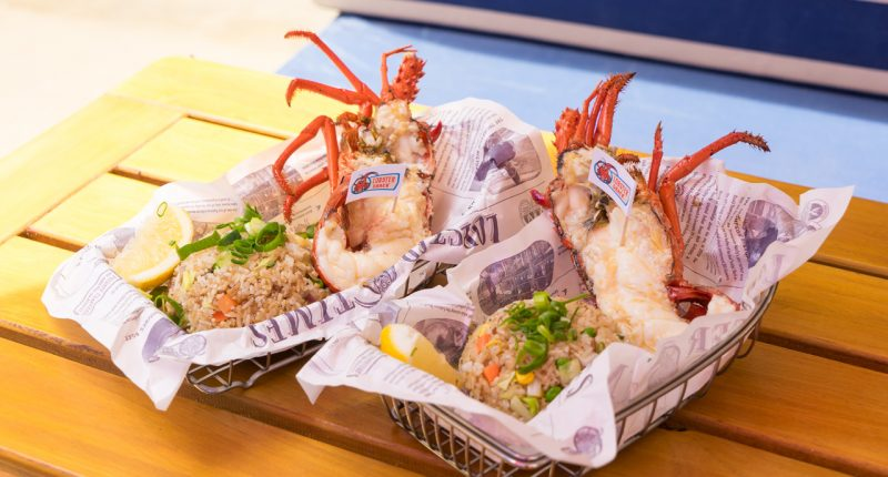 OpenDNA acquires China-based QBID and teams up with Lobster Shack
