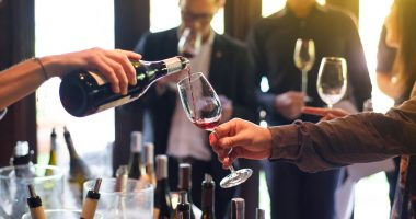 Digital Wine launches WINEDEPOT and signs five new partnerships
