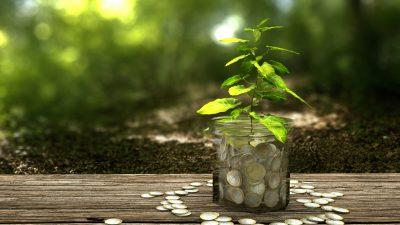 Aurora Labs raises $4M for global expansion