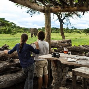The Ultimate Safari Getaway – Relais & Châteaux