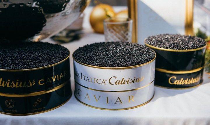 Inside Europe's Leading Caviar Farm