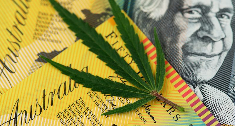 Cann Group (ASX:CAN) completes issue of 8M convertible notes