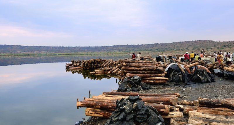 Oro Verde (ASX:OVL) set to start a scoping study at Makuutu Project, Uganda