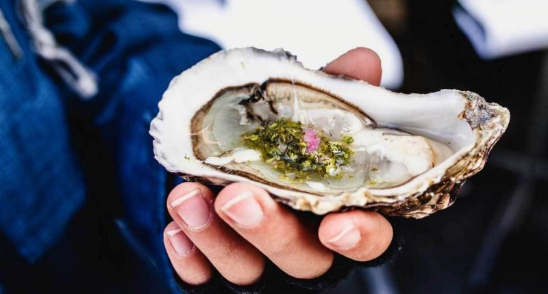 Oysters & Travel – Where To Find the Best Oysters in The World