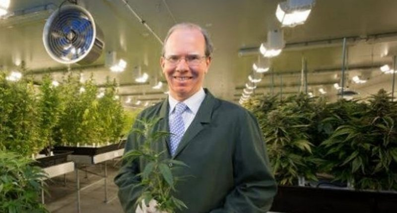 Cann Group (ASX:CAN) - CEO, Peter Crock - The Market Herald