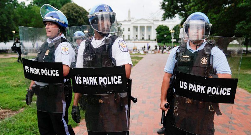 U.S. police and protestors clash in fight over statue