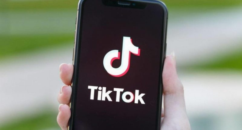 India bans Tik Tok and other Chinese apps as border skirmish grows