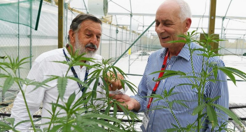 THC Global (ASX:THC) - CEO, Ken Charteris (right) - The Market Herald