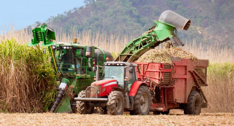 Rural Funds Group (ASX:RFF) buys sugar cane farms for $81.1M