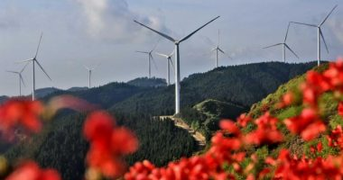 """Carbon neutral by 2060: China's pledge a """"true milestone"""" for climate policy"""