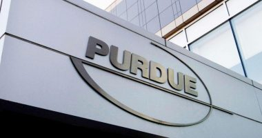 Purdue Pharma pleads guilty in A$11B OxyContin settlement