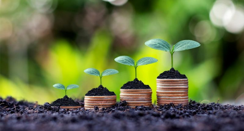 Carpentaria Resources (ASX:CAP) unveils $1.19M share purchase plan