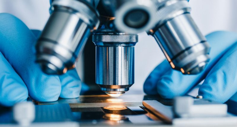 Factor Therapeutics (ASX:FTT) pulls out of LONGMILE transaction