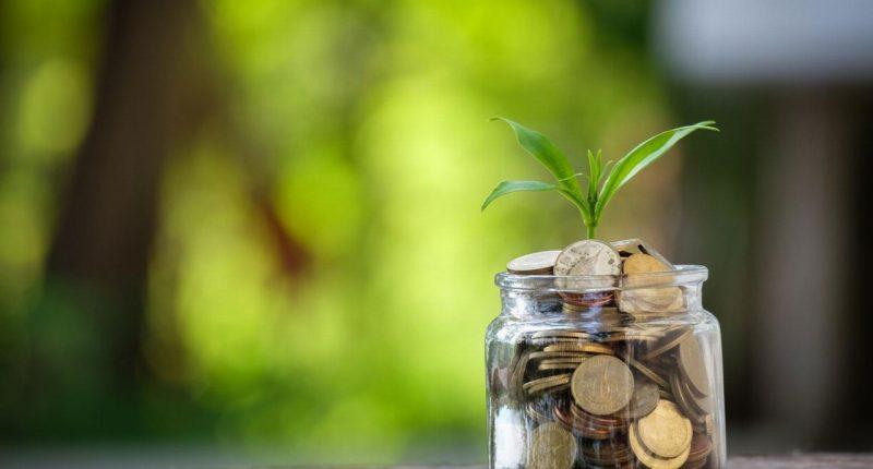 Avecho Biotechnology (ASX:AVE) starts week in trading halt