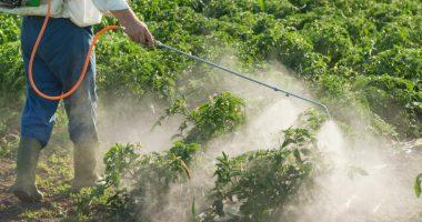 Bio-Gene Technology (ASX:BGT) hits milestone in insecticide development