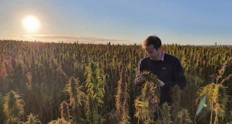 ECS Botanics (ASX:ECS) - Managing Director, Alex Keach - The Market Herald
