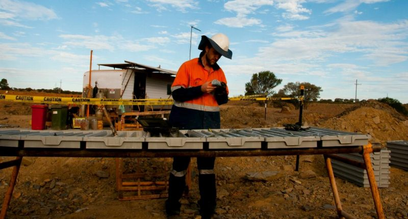 Great Northern Minerals' (ASX:GNM) shares jump on high-grade results from Camel Creek