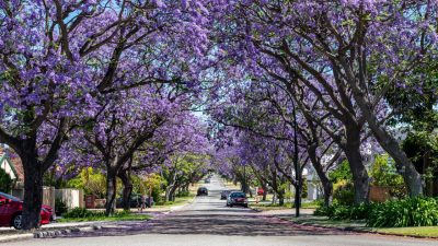 20 Perth suburbs post price growth of 10pc or more in 2021