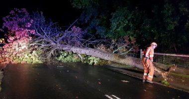 Australia's southeast coast lashed by wild weather