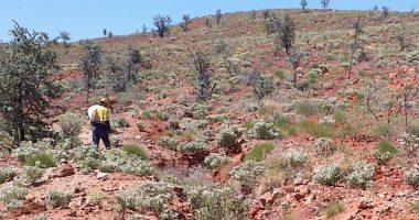 eMetals (ASX:EMT) intersects high-grade gold at Twin Hills