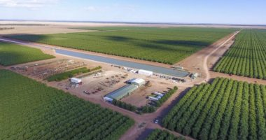 Rural Funds (ASX:RFF) payout ratio to hit 101pc in FY22
